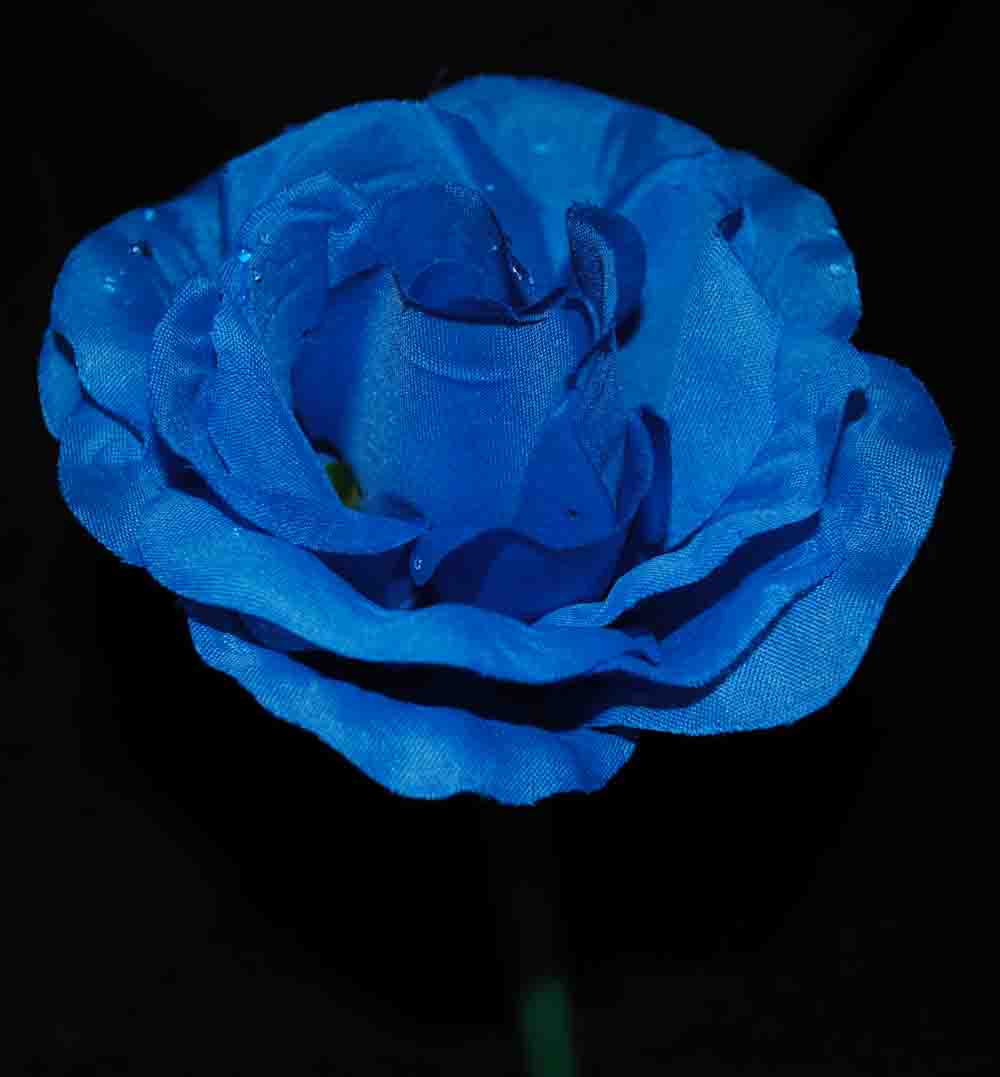 Blue Rose Pen