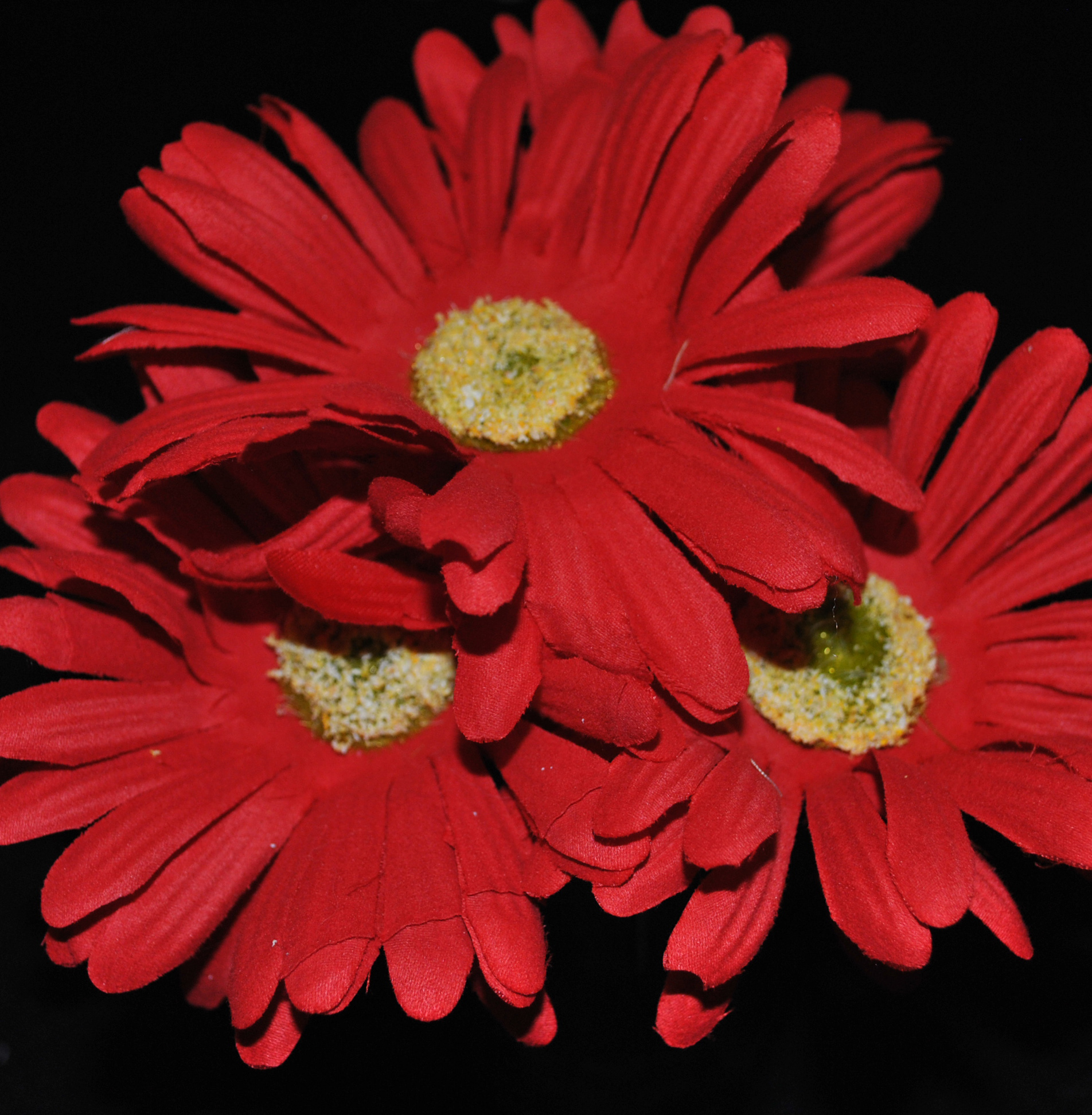 Red gerbera daisy pen katies flower pens red gerbera daisy izmirmasajfo