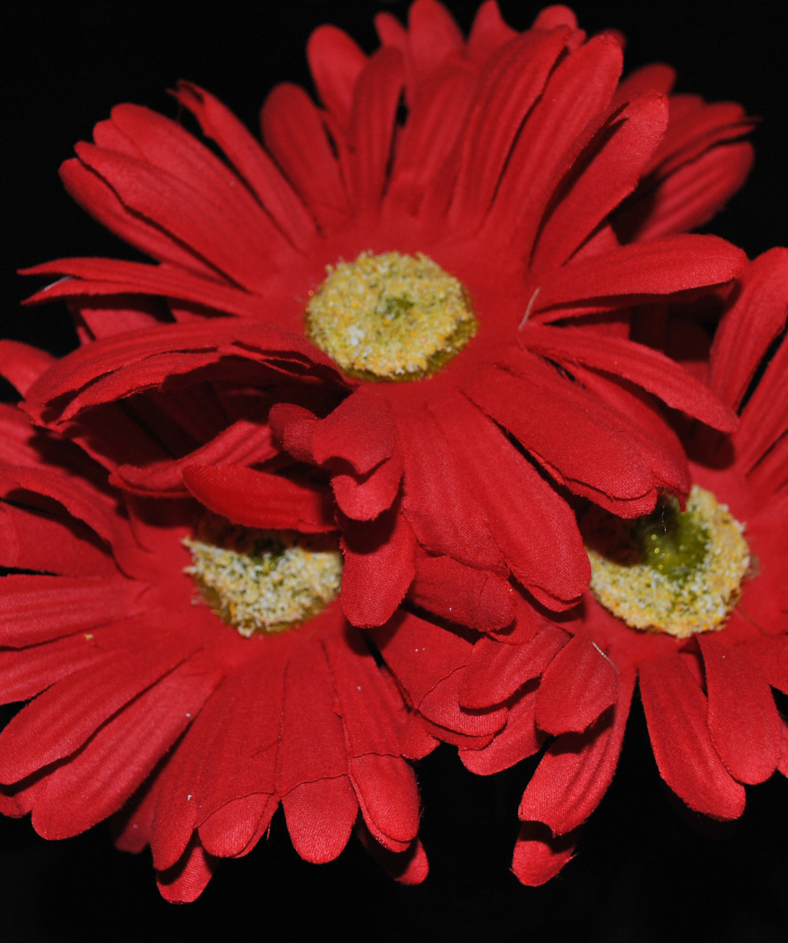 Red Gerbera Daisy Pen