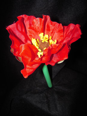 Red Poppy Pen